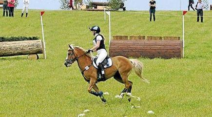 besoeg-glad-kalundborg-ved-kalundborg-horse-event-2